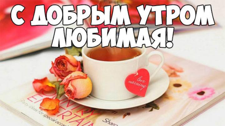 Прикольные открытки любимой с добрым утром